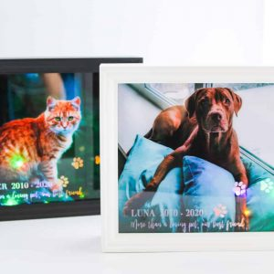 Pet Memorial Light Boxes