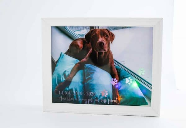 Pet Memorial Light Box Frame